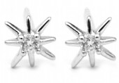 A-E15.1  SE104-131 Earrings 925S Silver 6mm with Zirconia