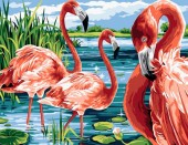 Y-C5.1 MS7573 Paint By Number Set Flamingos 50x40cmY-C5.1 MS7573 Paint By Number Set Flamingos 50x40cm