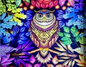 Q-N6.1 X512 Diamond Painting Set Owl 40x30cm