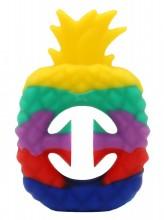 T-C2.1  T2130-001B Pop it Snapper Rainbow