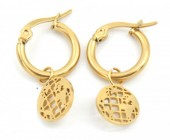 A-D3.1 E1901 Stainless Steel 12mm Earrings with 10mm World Map Gold